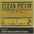 Track 05 - Cotton-Eyed Joe/Devil's Dream (Download)