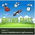 Track 11 - Cooley's Reel/Morrison's Jig/Promentory (Download)
