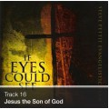Track 16 - Jesus the Son of God (Download)